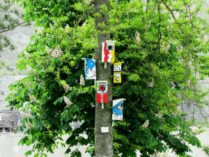 Projects | Birdhouses
